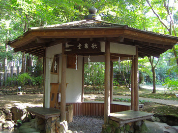 万葉植物園3.JPG